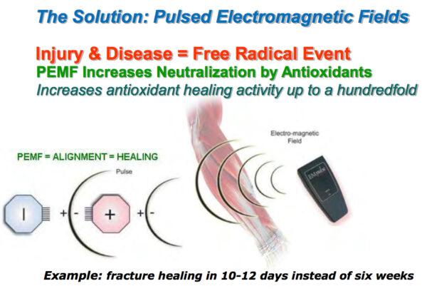 EM Pulser: Pulsed ElectroMagnetic Field